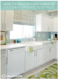 S Kitchen Dilemma Nice Kitchens And Blog - Do it yourself painting kitchen cabinets