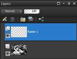 adding color to a black and white photo in corel paintshop pro