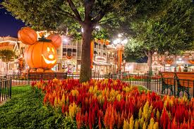 halloween california disneyland 2015 images reverse search
