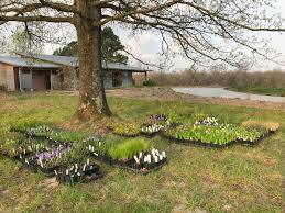 missouri native plant nursery spring planting pgt nature garden
