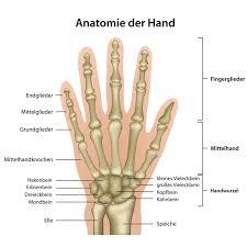 schmerzen in der handfläche die hände zum greifen tasten und kommunizieren paradisi de