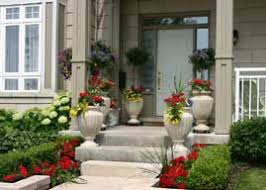 guide to container gardening from plant care