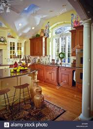 modern traditional kitchen modern traditional style suburban home kitchen skylights arch