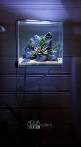 297 best aquarium images on pinterest aquarium ideas aquarium