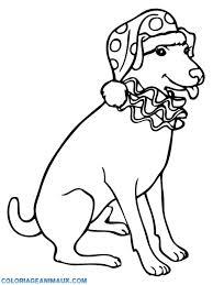 🎨Coloriage chien avec un bonnet à imprimer