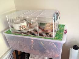 How Much Is A Hamster Cage A Bin Cage With Topper U0026 Travel Hamster Cages Gerbil And