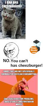 Meme Cheezburger - cheezburger meme builder 28 images you can not has cheezburger
