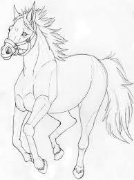 a horse sketch not done by suenta deathgod on deviantart