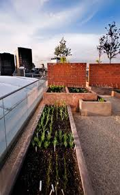 Dynamic Roofing Concepts by 1176 Best Green Roof Roof Garden And Terrace Images On Pinterest