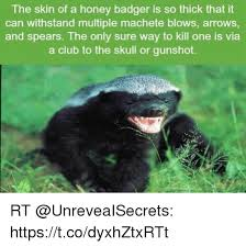 Meme Honey Badger - honey badger don t care honey badger meme on esmemes com