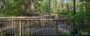 Vacation Village At Parkway Floor Plan Vacation Village At Parkway Orlando Fl Book Vacation Village At