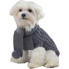 organic wool gray cable knit dog sweater