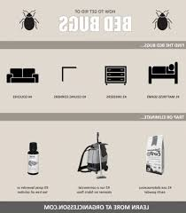 The Best Way To Kill Bed Bugs How Do You Get Rid Of Bed Bugs Bed Bug Heat Treatment