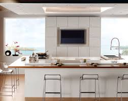 Kitchen Cabinets Fronts by Cabinet Plywood Kitchen Cabinets Briskness How To Make Kitchen
