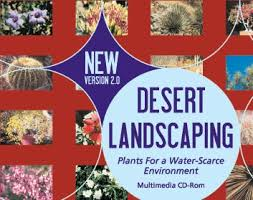 desert landscaping plants for a water scarce environment