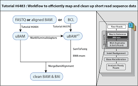 Fill In The Blank Us Map by How To Map And Clean Up Short Read Sequence Data Efficiently