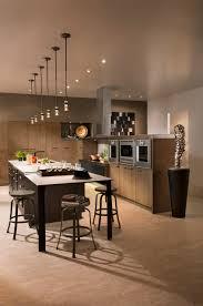 Contemporary Kitchen Designs Contemporary Kitchens Modern Kitchen Design Ideas Long Island Ny
