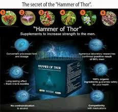 082226556333 agen hammer of thor asli di balikpapan cekiklan com