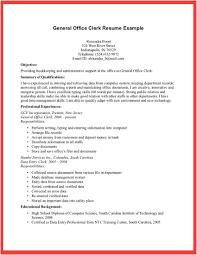 Example Cv Resume by Extraordinary Idea General Resume Examples 13 Sample Cv Resume Ideas