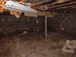 mold removal in pennsylvania and new jersey basement