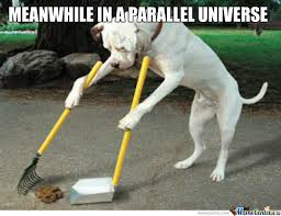 Clean Up Meme - meanwhile in a parallel universe where humans shit in parks and