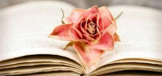 romantische sprüche liebeszitate über 97 romantische sprüche über die liebe