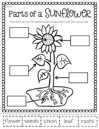 ship shape first grade the may packet and freebies
