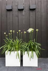 Concrete Planters 144 Best Poteries Exterieures Images On Pinterest Gardening