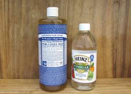 Homemade Upholstery Shampoo Green Cleaning Ingredients You Should Never Mix Bren Did