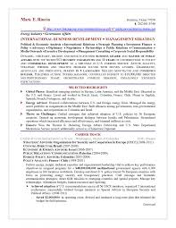 Federal Job Resume Samples by How To Make A Perfect Federal Resume Format 2015 2016 Resume 2015