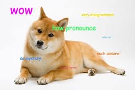 Shibe Meme Maker - images doge meme generator