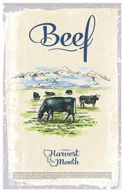 beef of the month harvest of the month beef poster montana state extension