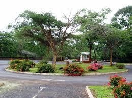 Botanical Gardens Highland Park National Herbarium And Botanic Garden Experience