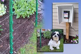 above ground electric fence kit from woodstream ideal for dogs