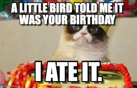 Grumpy Cat Birthday Memes - grumpy cat birthday bird meme sparky pinterest funny happy