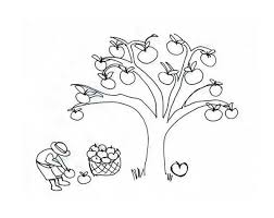 apple tree coloring pages an apple tree colouring page happy colouring