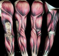 70 muscle tattoo designs for men exposed fiber ink ideas