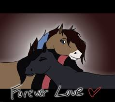 horseland images love wallpaper background photos