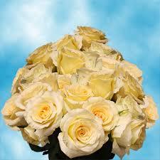 cheap roses light yellow roses stems roses florist cheap roses