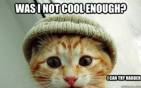 Cool Cat Meme - was i not cool enough cat meme cat planet cat planet