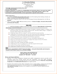Sample Resume For Document Controller by 28 Sample Resume Doc For It Freshers 5 Simple Resume Format