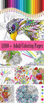 Color And Paint 4959 Best Coloring Pages Images On Pinterest Coloring Books
