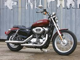 harley sportster 1200 low one day live laugh love