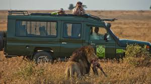 african safari car awards press coverage and recognition for african dream safaris