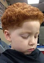 taper fade curly hair taper fade with curly hair pertaining to hair elipso salon