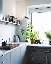 plante pour cuisine plantes cuisine conseils plantes de cuisine conseils pratiques et
