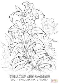 homely idea state flower coloring pages click the south carolina