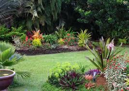 Small Tropical Garden Ideas Home And Garden Design Small Tropical Garden Ideas
