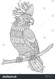 cockatoo parrot coloring book adults vector stock vector 509645308