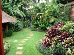 collection in backyard tropical landscaping ideas ideas for a